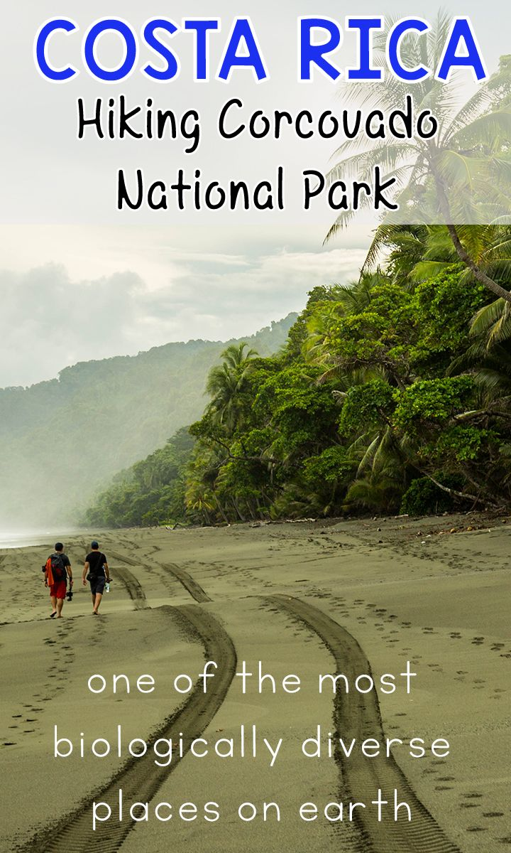 Hiking Corcovado National Park? Here's what you need to know about hiking the…