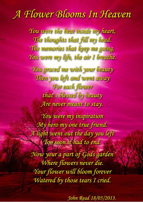 A Flower Blooms In Heaven. – Sad Poetry | Poetry 4 U