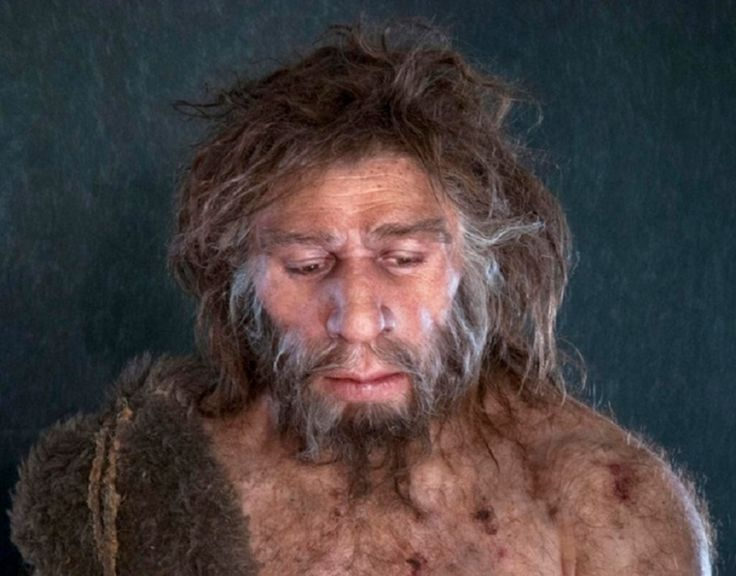 The ancestor of neanderthals and denisovans interbred with