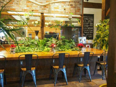 【3.CAFE GARDEN PLACE】松山 緑いっぱいのオシャレなカフェ♪ボリューム満点のサンドイッチも美味しい。松山カフェ、愛媛カフェ