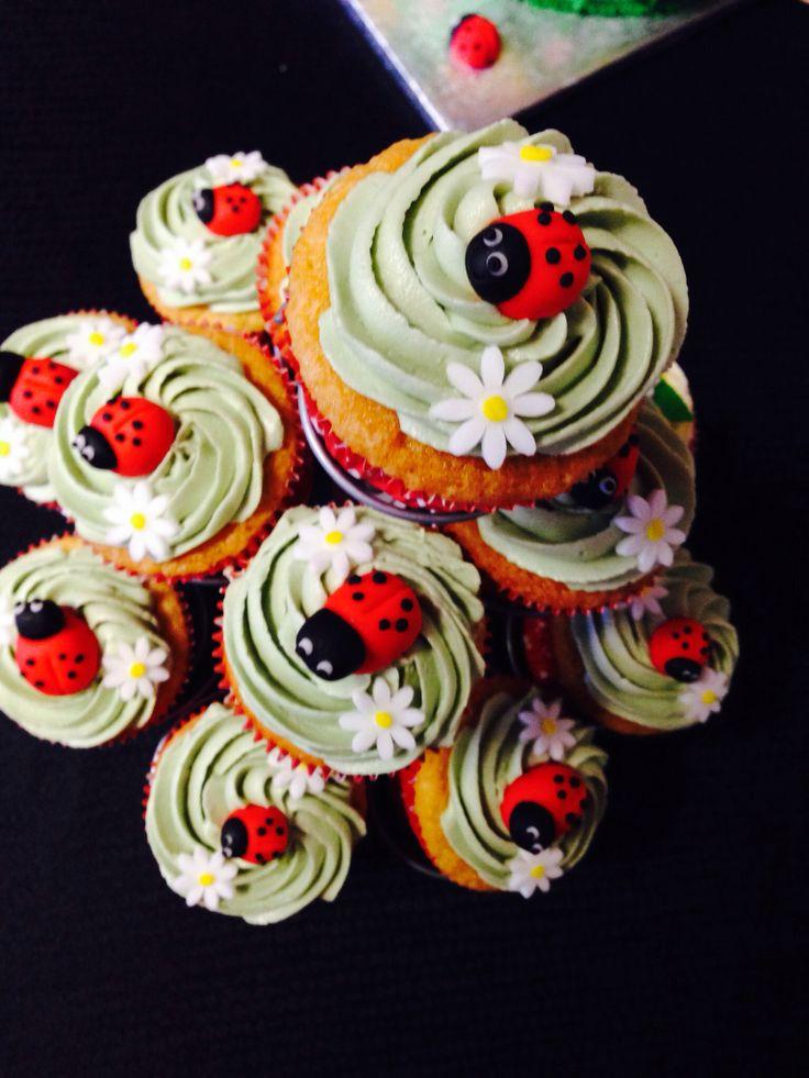 Ladybird theme party ❤️x