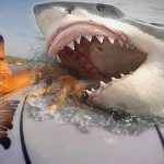 5 Horrifying Videos Caught on GoPro