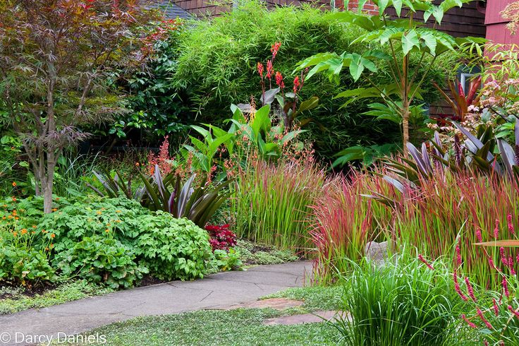 Perennial Garden with Japanese Maple - Creative Landscapes, Inc.