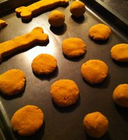 Grain Free Pumpkin Pie Dog Treats from K9 Instinct!  Awesome for the puppies with allergies!