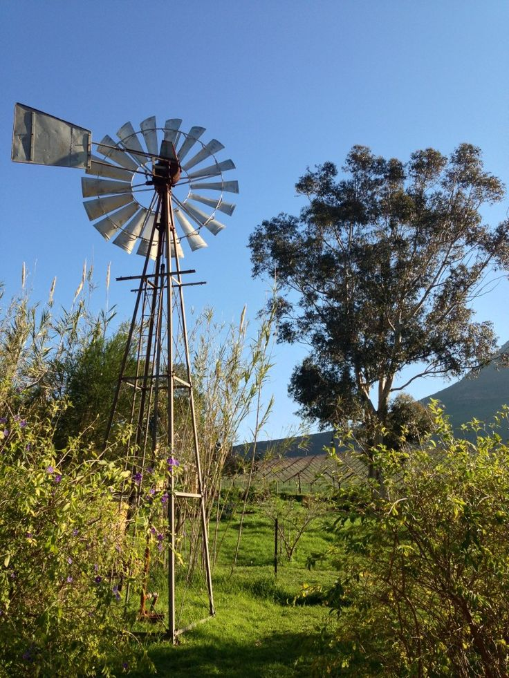 Riebeek Kasteel - South Africa