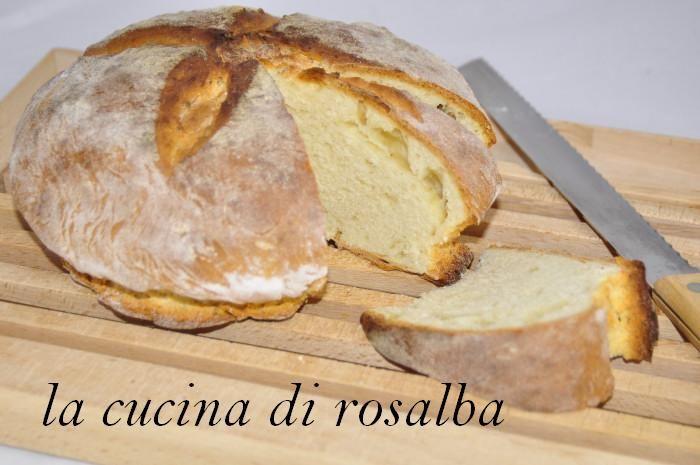pane irlandese | ricetta la cucina di rosalba