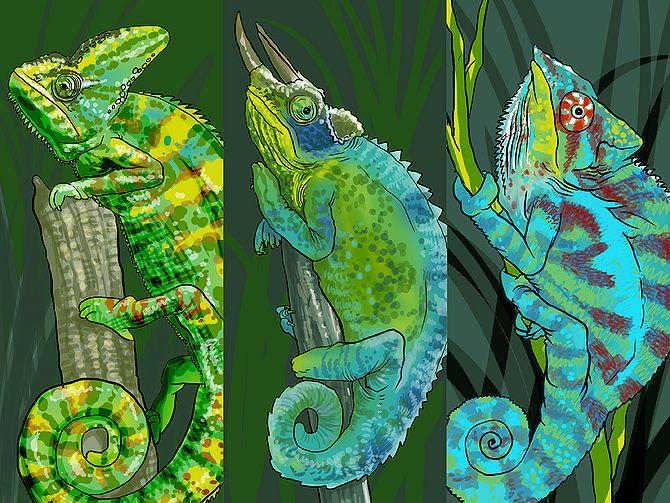 Аниме картинки хамелеонов