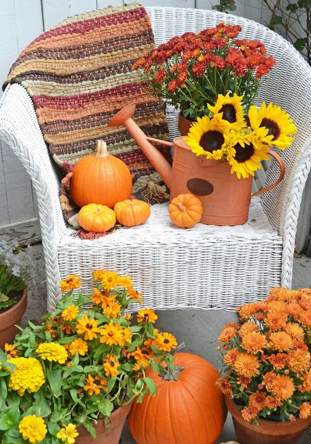 It's Beginning to Look Like Autumn In My Garden