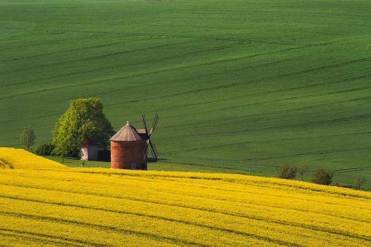 wiatrak w Chvalkovicach, Morawy poludniowe, Czechy