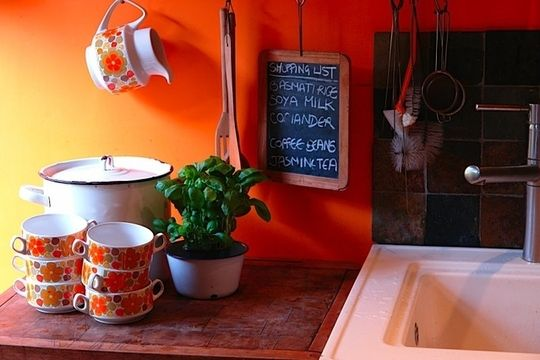 living plants in the kitchen - love the colour on the wall!