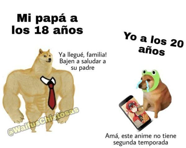 Doge Meme Vs Cheems Meme Perro Grande Perro Chico Memes En Espanol La Mejor Recopilacion De Memes Lo Mas Viral De Int Memes Memes Otakus Memes Divertidos