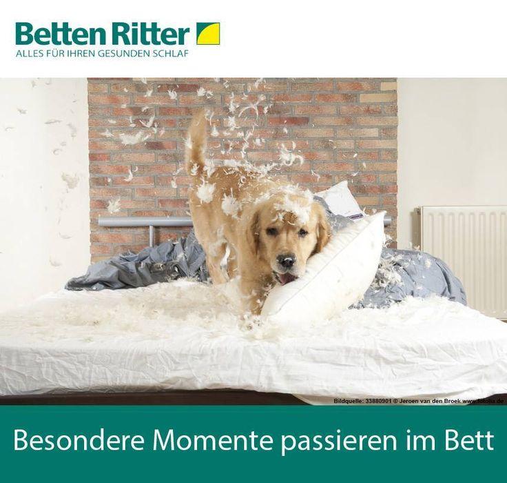 17 best betten ritter im m rz images on pinterest. Black Bedroom Furniture Sets. Home Design Ideas