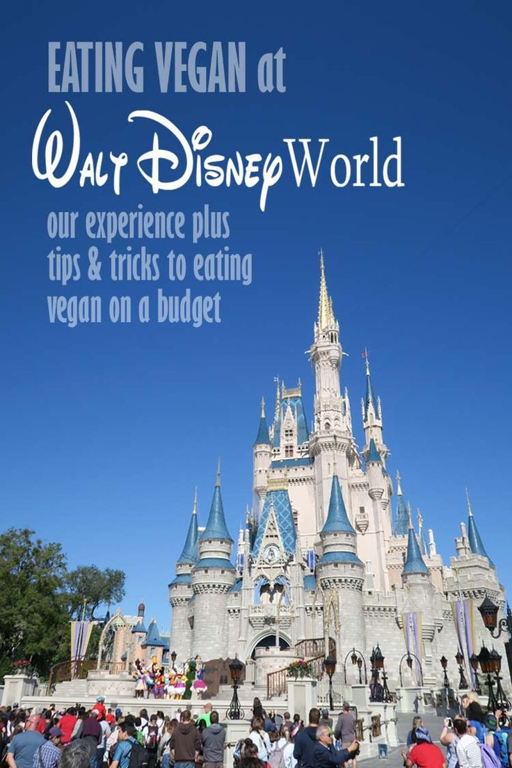 Our experience eating vegan at Disney World in January 2017. We went for the Disney World marathon and visited all four Disney theme parks.