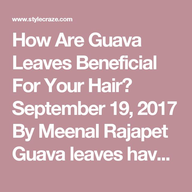How Are Guava Leaves Beneficial For Your Hair? September 19, 2017 By Meenal Rajapet Guava leaves have taken the internet by storm with claims of it being a miracle solution for hair loss. It is also gaining popularity as a hair thickening ingredient that promotes rapid hair growth. But how exactly are guava leaves beneficial for your hair? More often than not, hair fall is a direct result of unhealthy scalp conditions. Guava leaves have analgesic, anti-inflammatory, antimicrobial, and an...