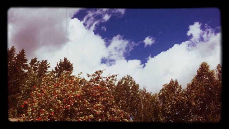 Suomen Luonnon Päivä 💙