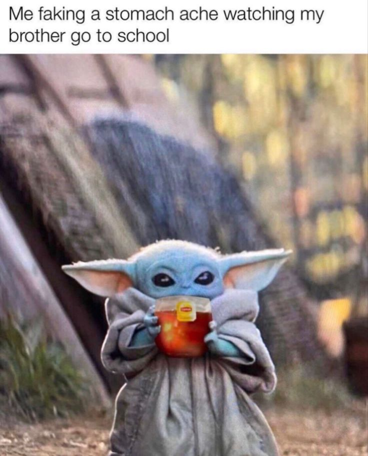 Pin by dino_chicken on relatable 4 Yoda meme, Crazy