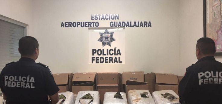 Localizan mariguana en el aeropuerto de Guadalajara - http://www.notimundo.com.mx/estados/decomisan-mariguana-guadalajara/