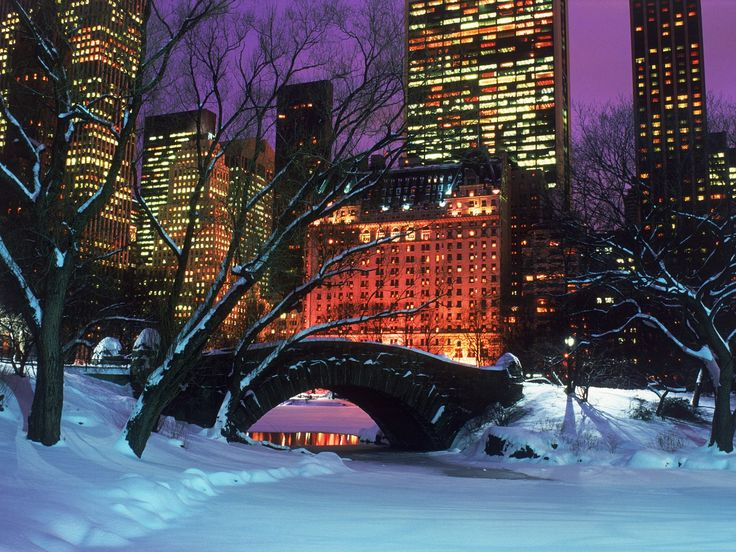 : Winter Snow, Winter Art, Christmas Time, The Holidays, Centralpark, New York Cities, Central Parks, Bridges, Newyork