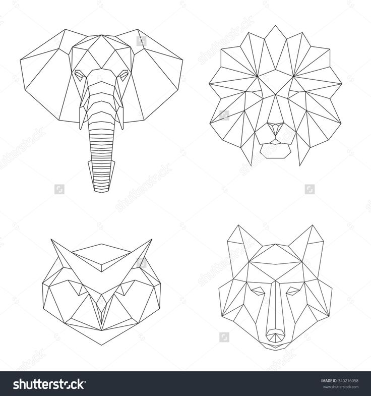 poly geometric - Google Search                                                                                                                                                                                 Más