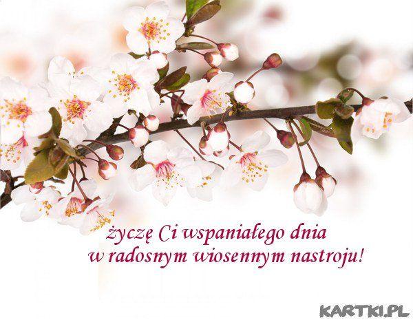 radosnego wiosennego nastroju życzę...