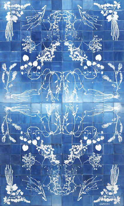 Beautiful combination of small Cyanotypes. Love this!