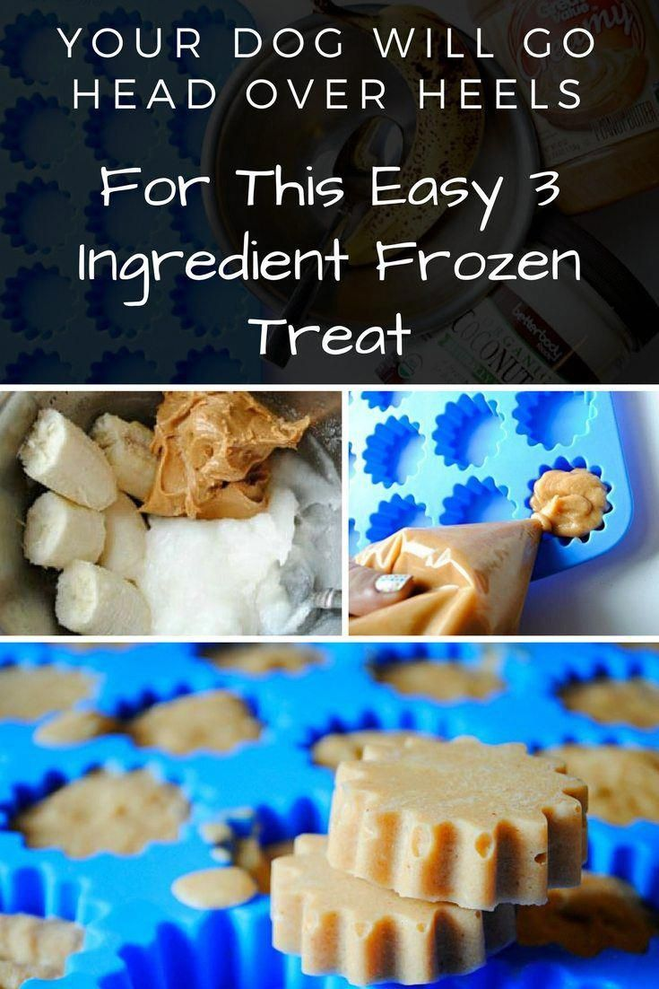 If You Dont Like Spending A Ton Of Money On Dog Treats You Can Make These At Home For A Fraction Of The Price And Theyre Healthy Dogdiy S