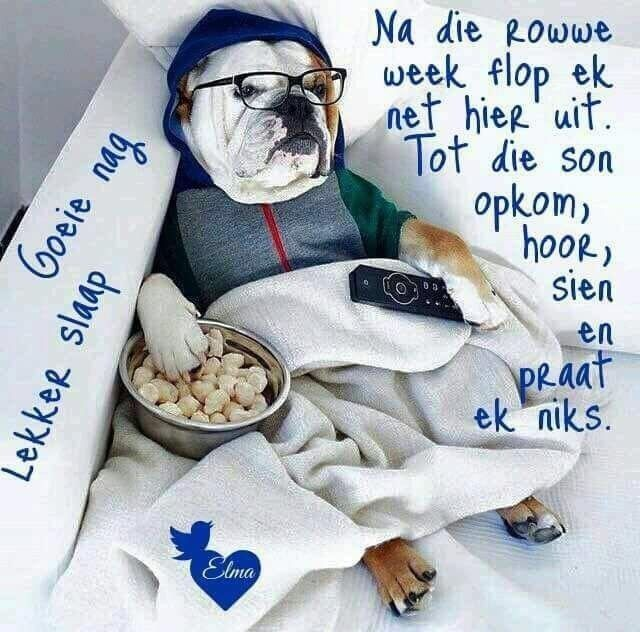 Pin By Henriette De On Afrikaans Good Night Sweet Dreams Goeie