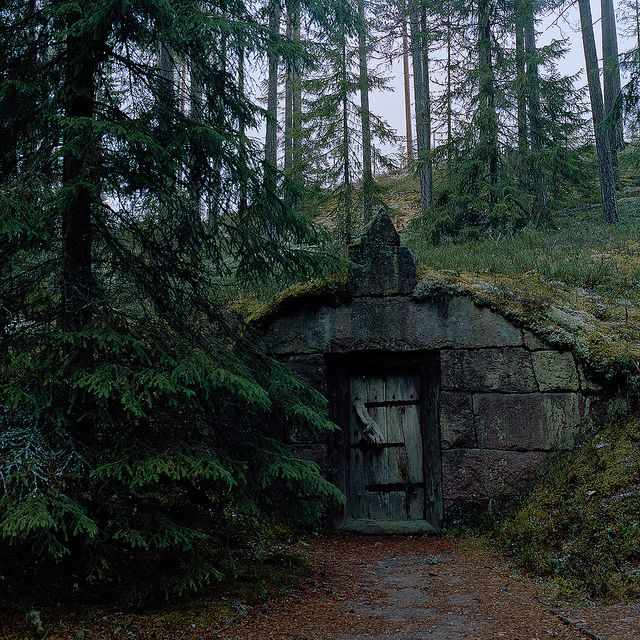 88 best images about food storage root cellars on for Witches cottage house plans
