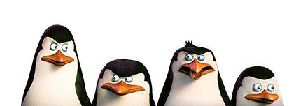 Pingüinos de Madagascar Mirando el usuario