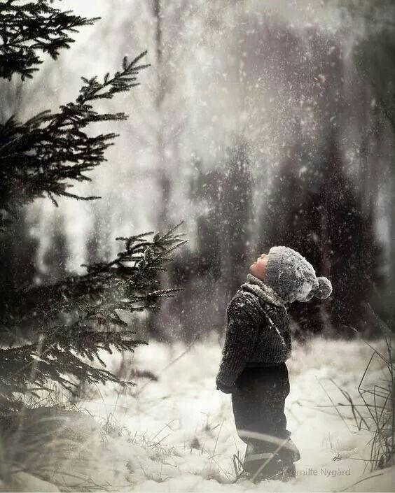 Dert etme küçük adam o tepesini göremediğin ağaç ta bir zamanlar   fidandı.