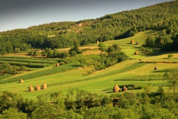 In ultimii ani, zona Transilvaniei si Tragu Mures...despre frumusetile din imprejurimile Muresului vom vorbi astazi, pentru ca natura are un farmec tacut...