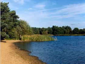 Frensham Great Pond ... like a beach for a pretend visit to the seaside!