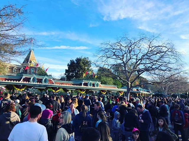 Look At That Line To Get Into Disneyland Today I Think Everyone