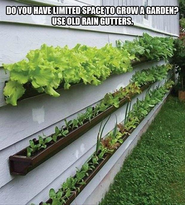 For the garden - grow plants in old rain gutters.