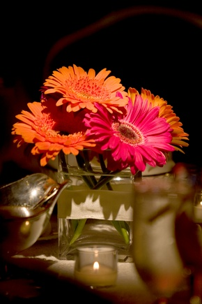 1000 Ideas About Gerbera Daisy Centerpiece On Pinterest Daisy Centerpieces Centerpieces And