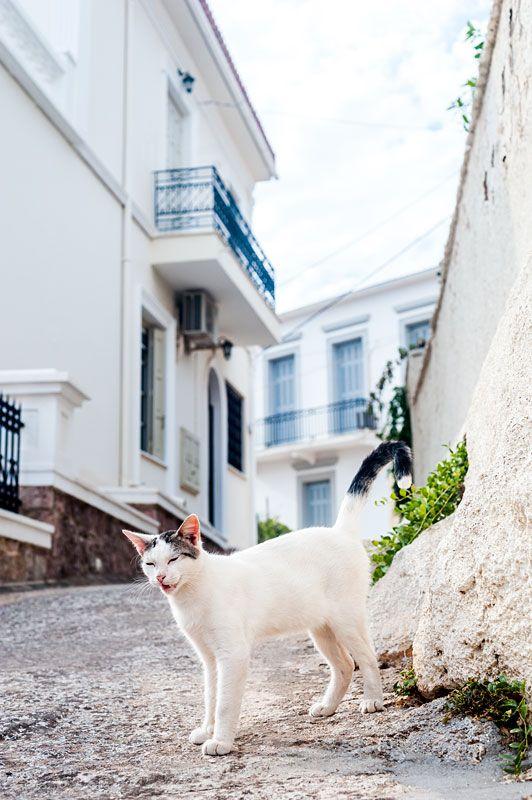 The last moments in Patras by Eetu Ahanen
