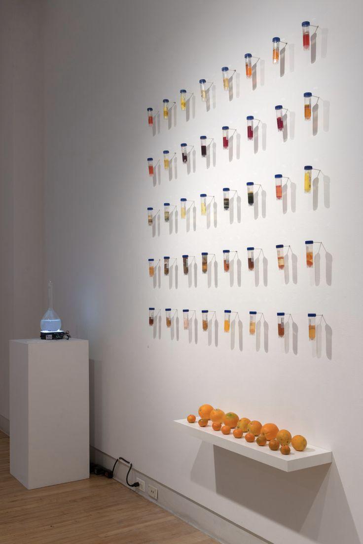 SHANE BODDINGTON20140926_ (1) Bio Art Lab in 2020