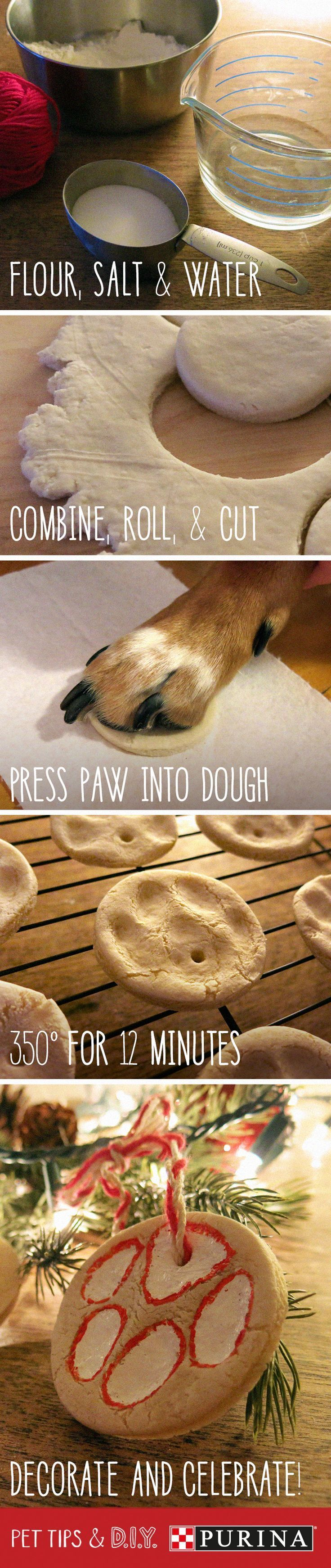 Make a DIY paw print ornament to celebrate the holiday season with your cat or dog. Here's your how-to guide, including a recipe for dough that is safe for pets: Mix together 4 cups of flour, 1 cup of salt, and 1 ½ cups of water, and knead until dough is well combined. Roll out dough and cut into desired shapes. Press your pet's paw into the dough and then bake in a 350-degree F oven for 12 minutes. Let the ornaments cool completely before sprucing them up as you like! #PetLifeHack
