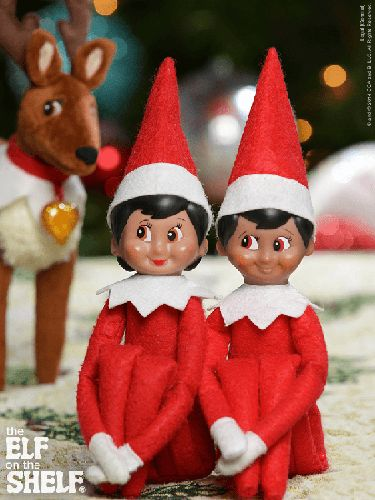 Elf on the Shelf Ideas   Elf Pet Photobomb   Elf Pets Reindeer