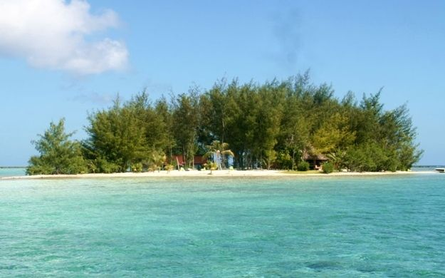 Price: £625,000 | 7 Private Islands That Cost Less Than A Flat In London