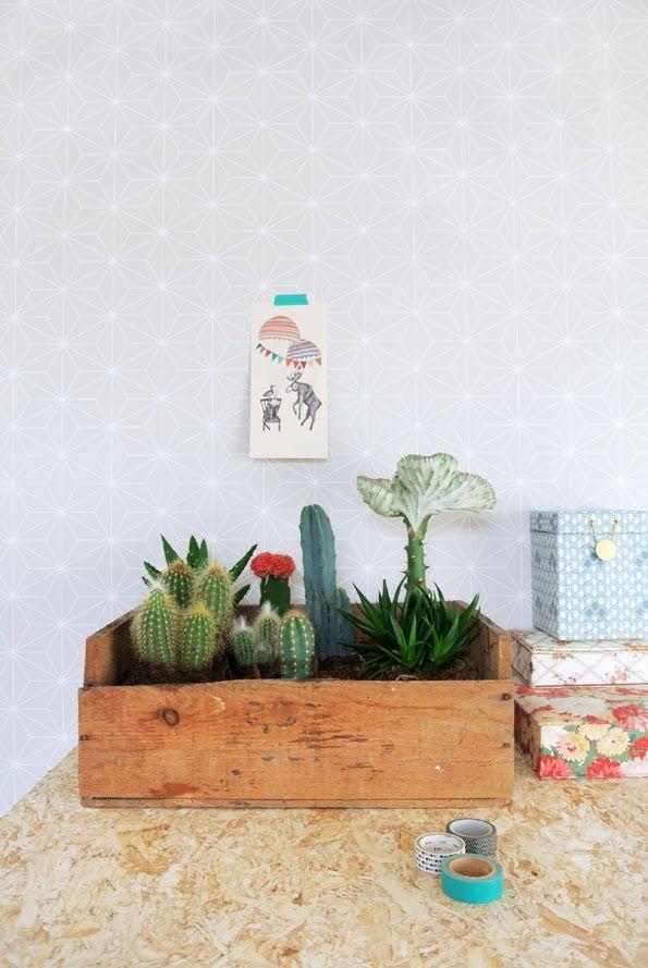 Me encanta esta idea... a buscar una caja de madera! //My Attic: New Greens//