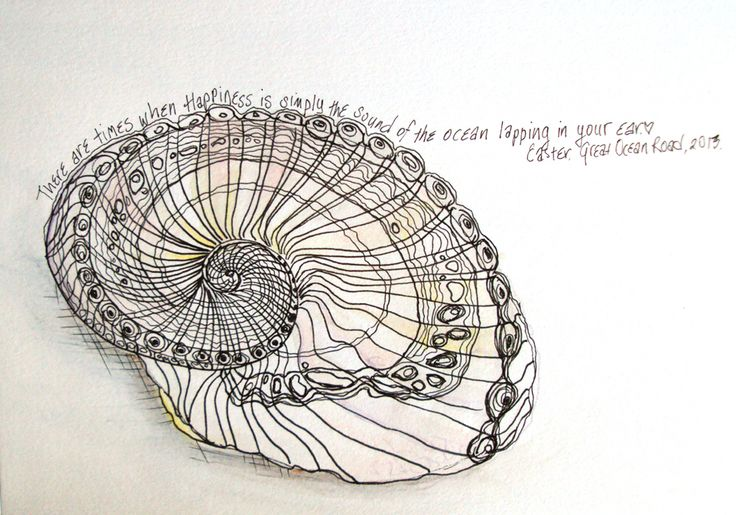 Contour Line Drawing Shell : Best contour line drawings images on pinterest