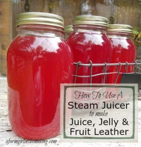 Juicing for the purpose of preserving a harvest can be quite a drawn out process.  Simplify the process with the use of a Steam Juicer to receive crystal clear, sediment free juice concentrate; perfect for drinking, jelly or fruit leather. afarmgirlinthemaking.com