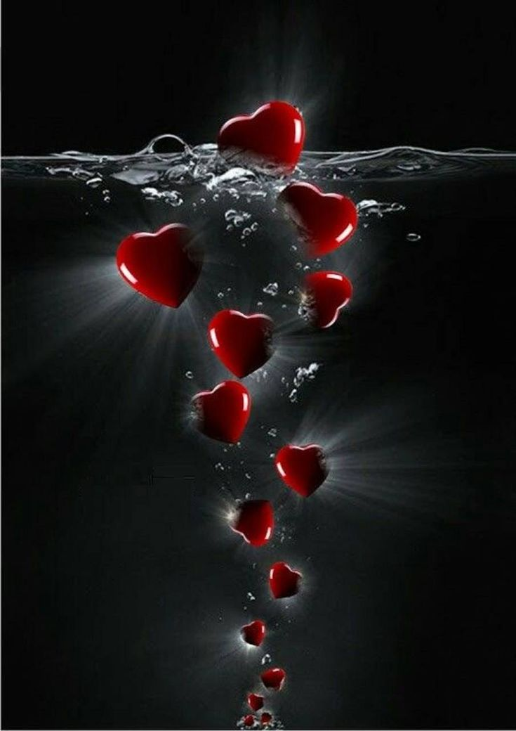Download Hearts Wallpaper by mirapav b1 Free on ZEDGE