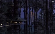 Tree house, House, Tree, Light, Night, Bridge, Forest