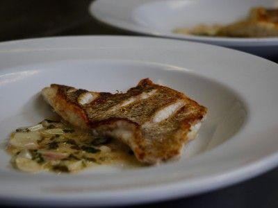 Lionfish with Garlic-Cilantro Scampi Sauce