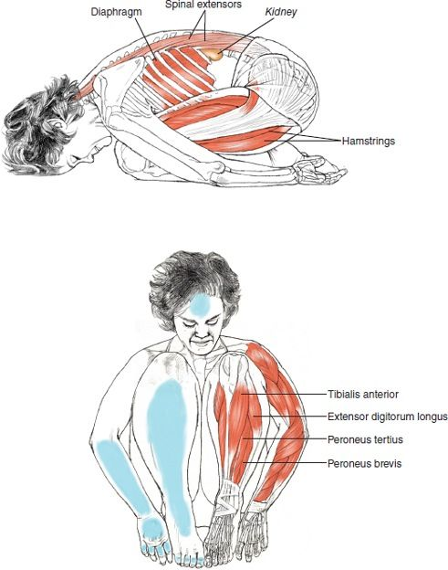 Child's Pose / Balasana Great for putting the lower back into light traction.