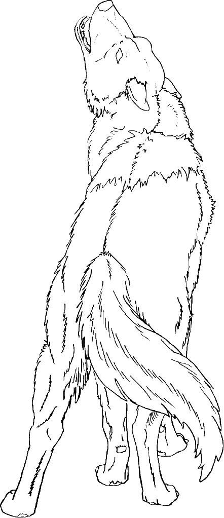 coloring howling pages wolf silhouettes | MagiStream • View topic - Hawke's Free Colorin