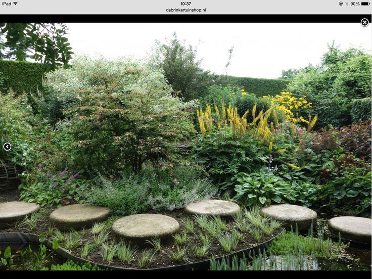 Border met heesters en vaste planten