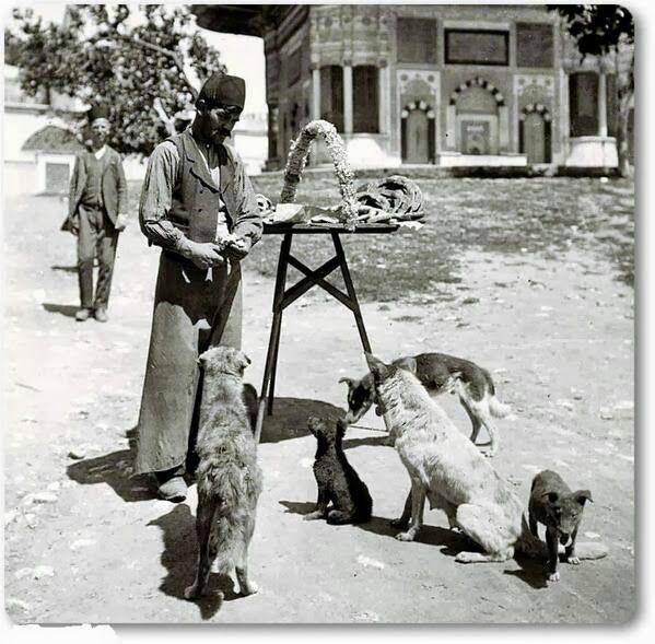 Simitlerini sokak köpekleriyle paylaşan bir simitçi. Sultanahmet - 1880 ler